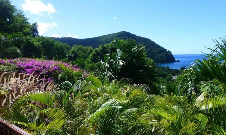 Découvrir Voyager en voiture en Guadeloupe