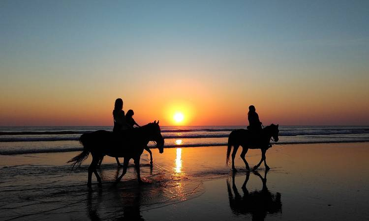 Discover Go in holidays with your horse