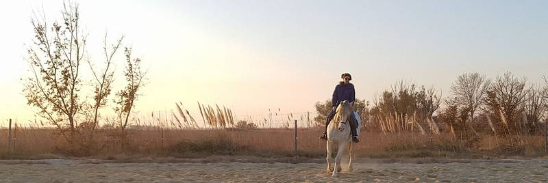 Camargue stay with your horse