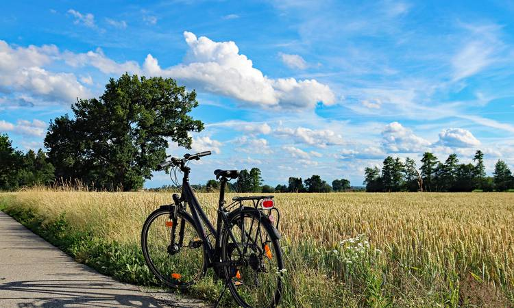 Discover Gourmet Stay by Bike