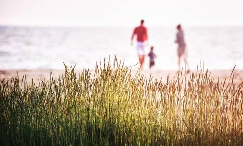 Photo de famille à la mer