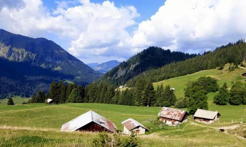 Photo d'alpage en montagne