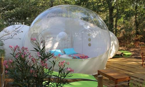 au pays des bulles.jpg