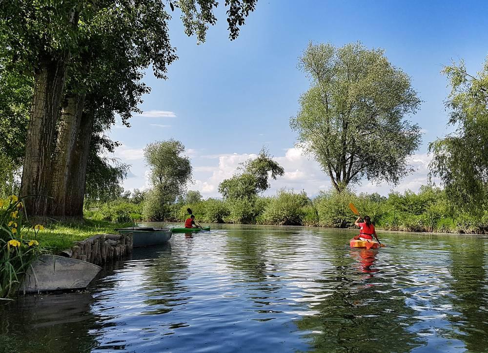 canoë sur une rivière