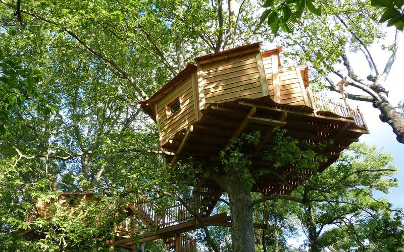 EVJF cabane dans les arbres