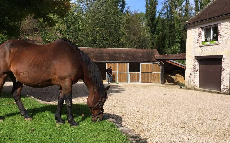 Equestrian cottage moulin d'icare