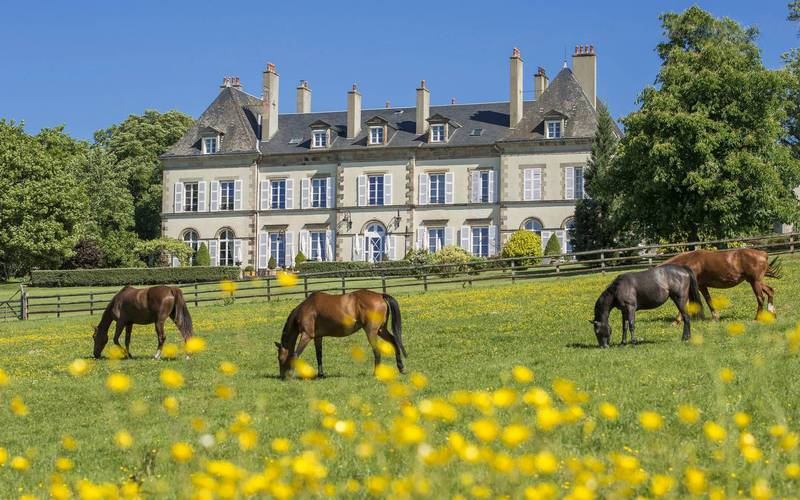 Horses in pasture in front of château d'Ygrande