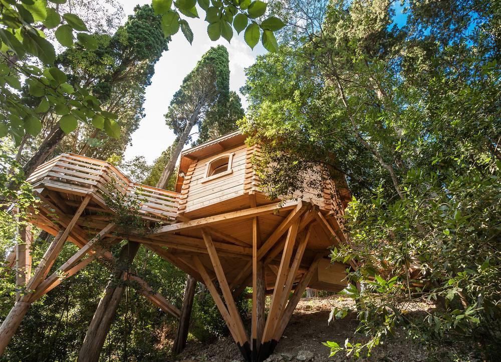 Cabane perchée dans les bois