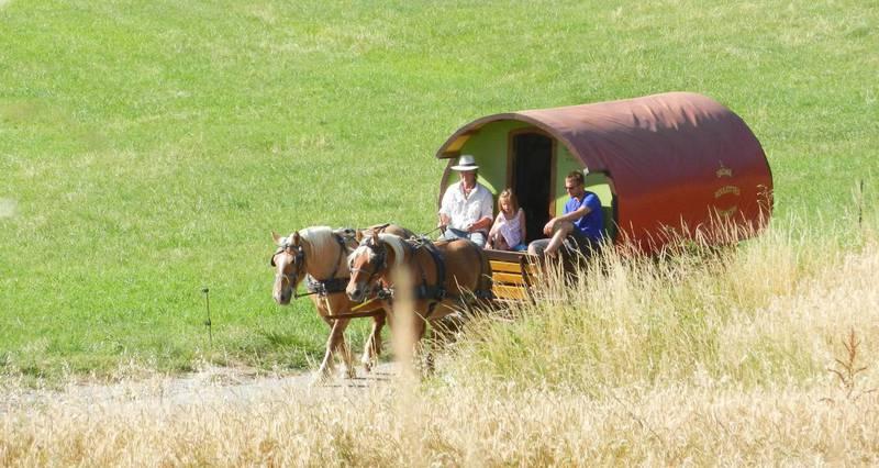 Séjour itinérant en roulotte chevaux