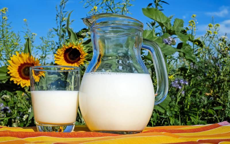 faire son lait végétal