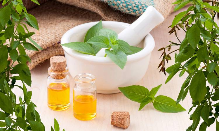 Discover  Aromatherapy and essential oils stay