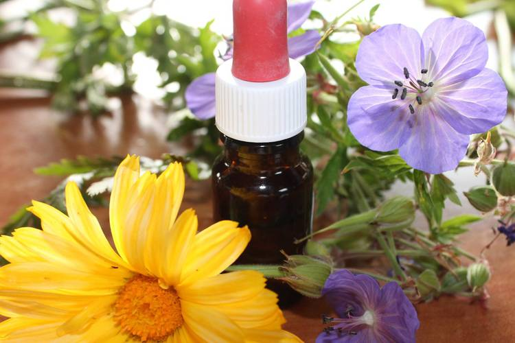 Séjours phytothérapie aromathérapie