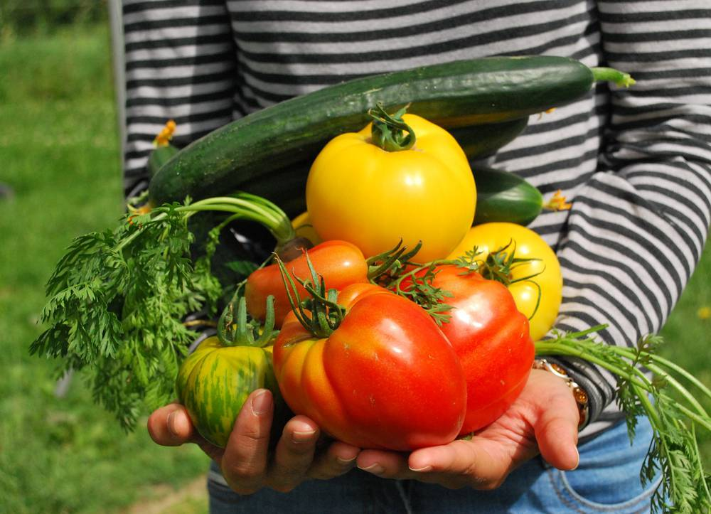 Légumes et jardinier
