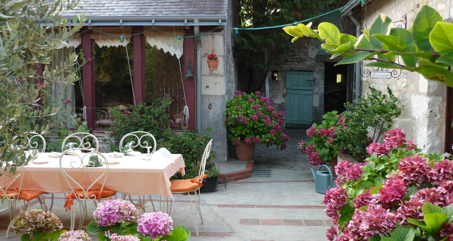 Bed & breakfast: les bournais in theneuil (100251)