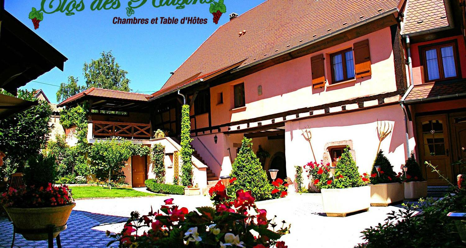 Bed & breakfast: le clos des raisins in beblenheim (100364)