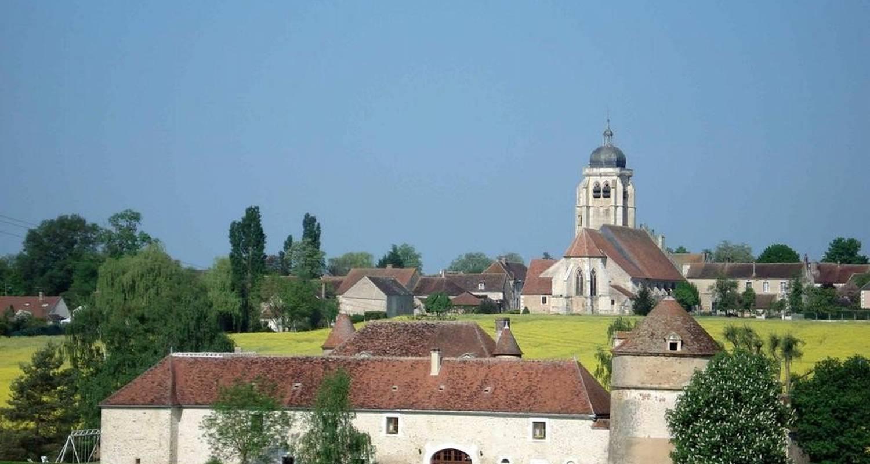 Chambre d'hôtes: château de ribourdin  à chevannes (100980)