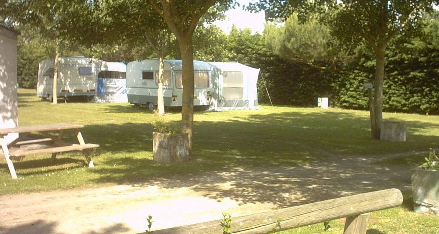 Camping pitches: camping le montet in dolus-d'oléron (101275)