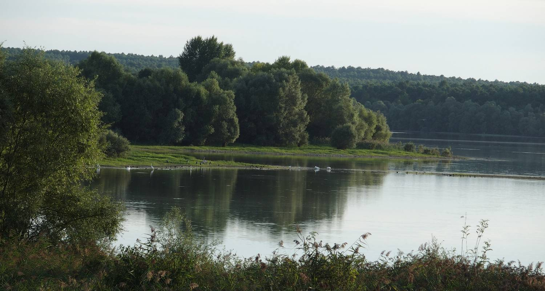Gîte: l'epronnière in channay-sur-lathan (129530)