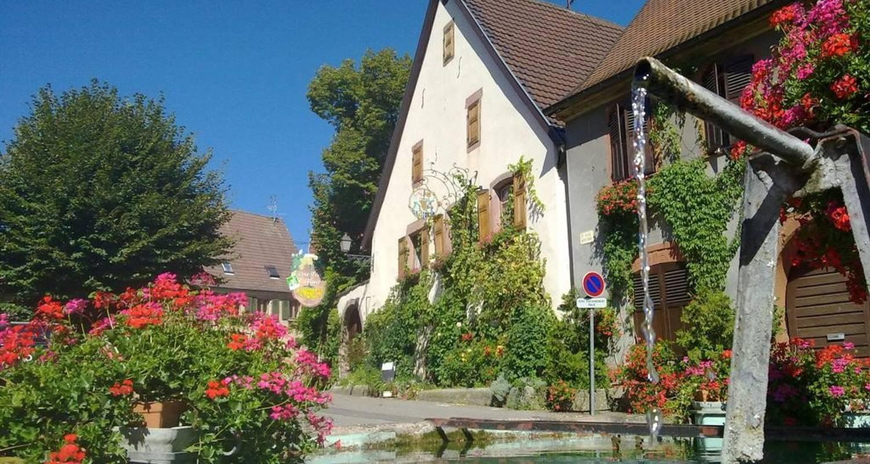 Habitación de huéspedes: maison humbrecht en pfaffenheim (102680)