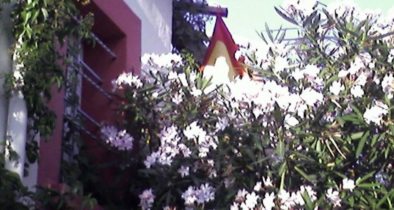 Chambre d'hôtes: cielito lindo à montpellier (103242)