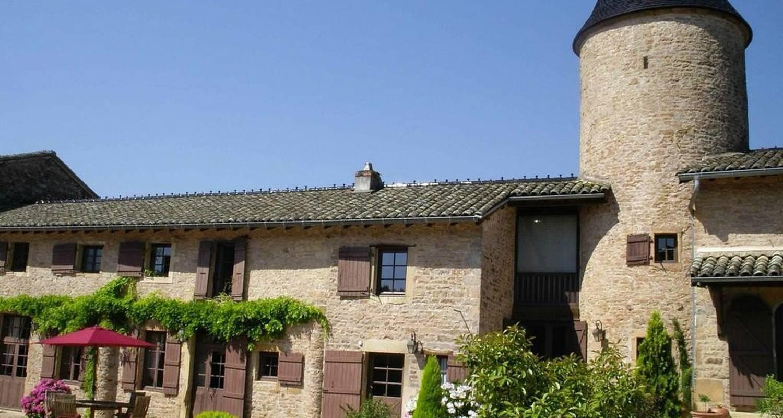 Gîte: château de chasselas à chasselas (103605)