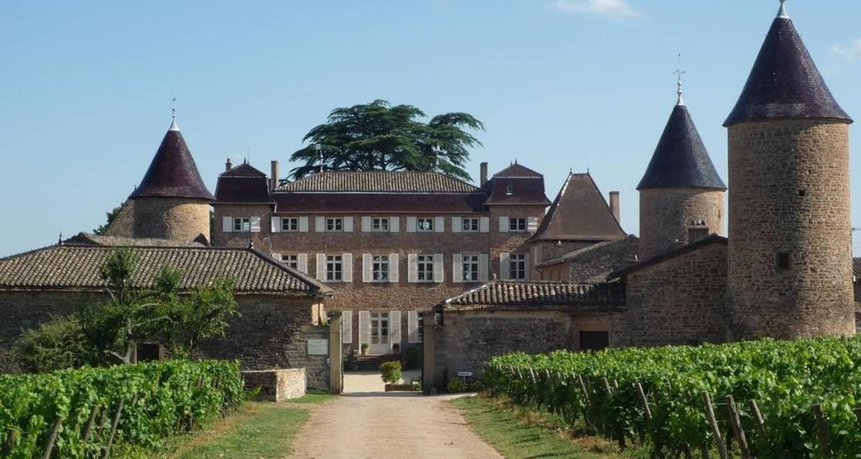 Gîte: château de chasselas à chasselas (103608)