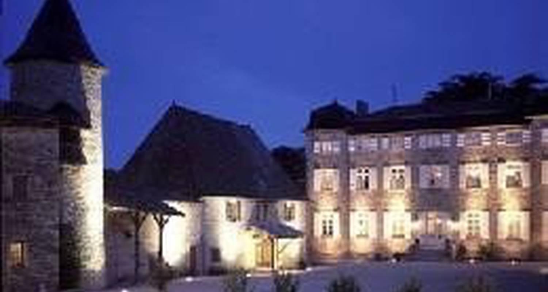 Gîte: château de chasselas à chasselas (103607)