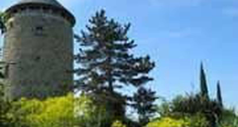 Chambre d'hôtes: moulin géant  à rochefort-sur-loire (104654)