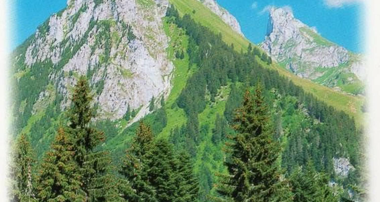 Gîte: edelweiss à saint-paul-en-chablais (105635)