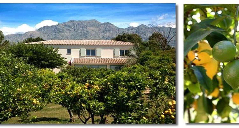 Bed & breakfast: la maison d'hôtes in calenzana (108096)