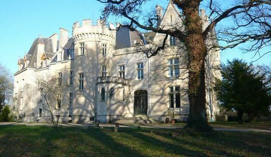Château des Réaux picture