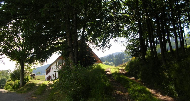 Gîte: gite rural la hollée in le bonhomme (109632)