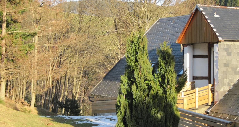 Gîte: gite rural la hollée in le bonhomme (109634)