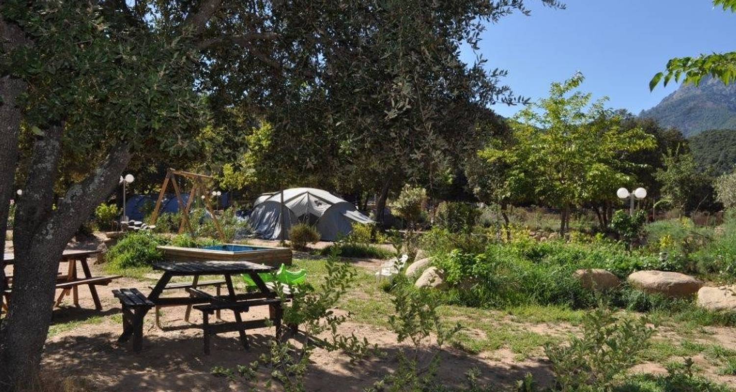 Camping pitches: camping en corse in moltifao (109878)