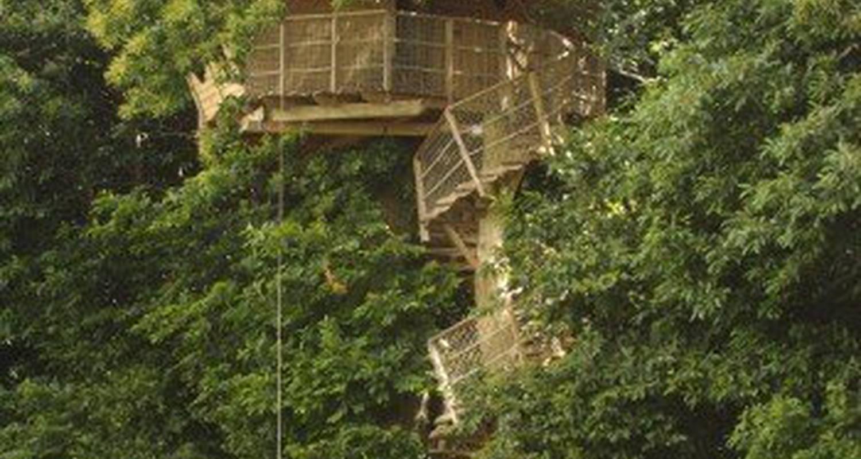 Cabane dans les arbres isigny le buat 25882 - Chambre d hote dans les arbres ...