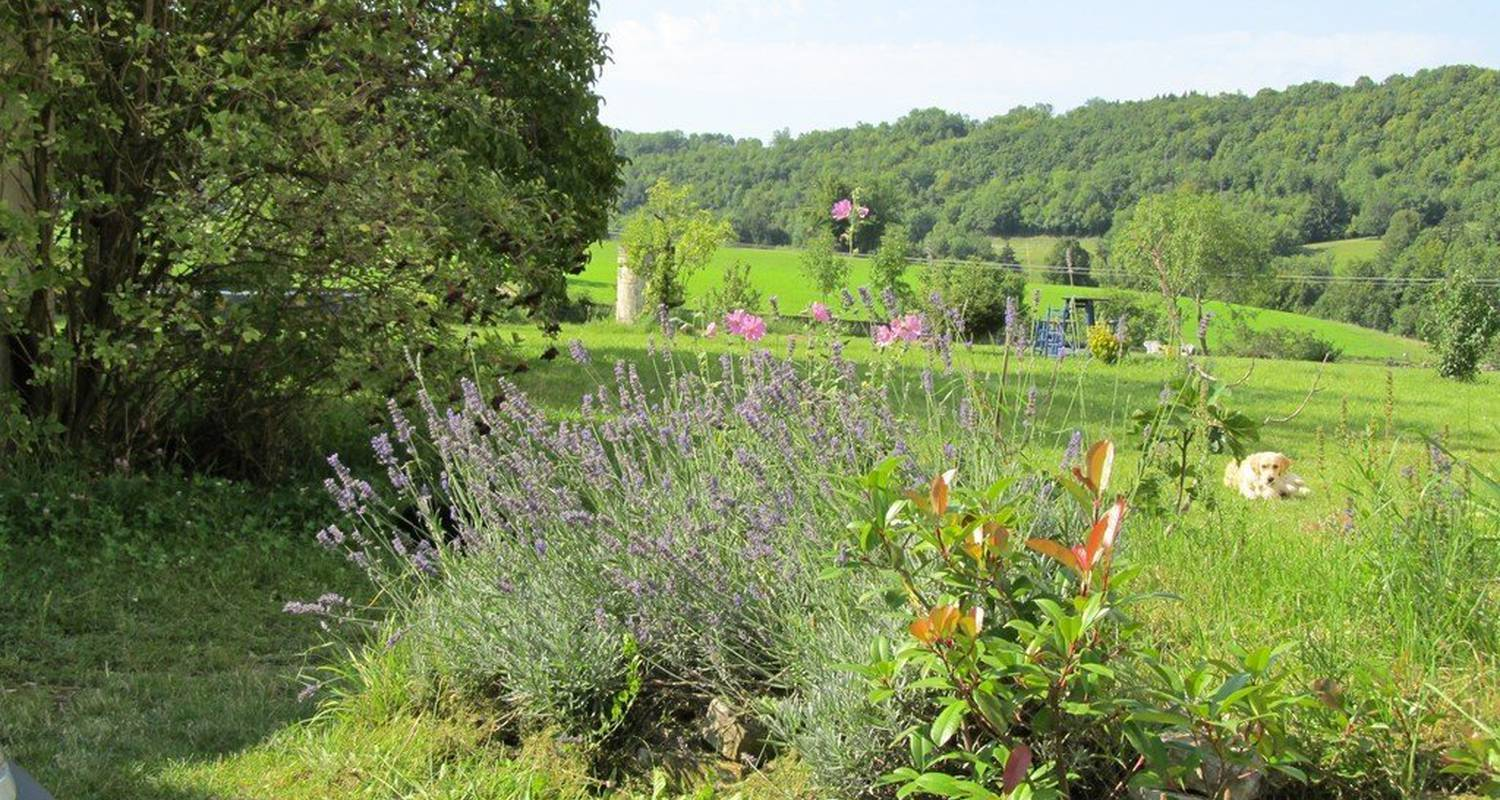Bed & breakfast: goute la vie in marchamp (110463)
