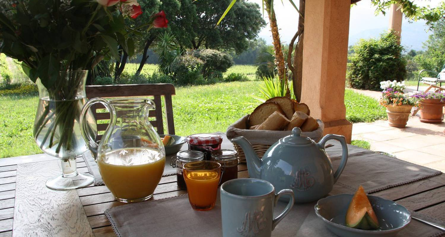 Bed & breakfast: les figuiers in le plan-de-la-tour (113890)