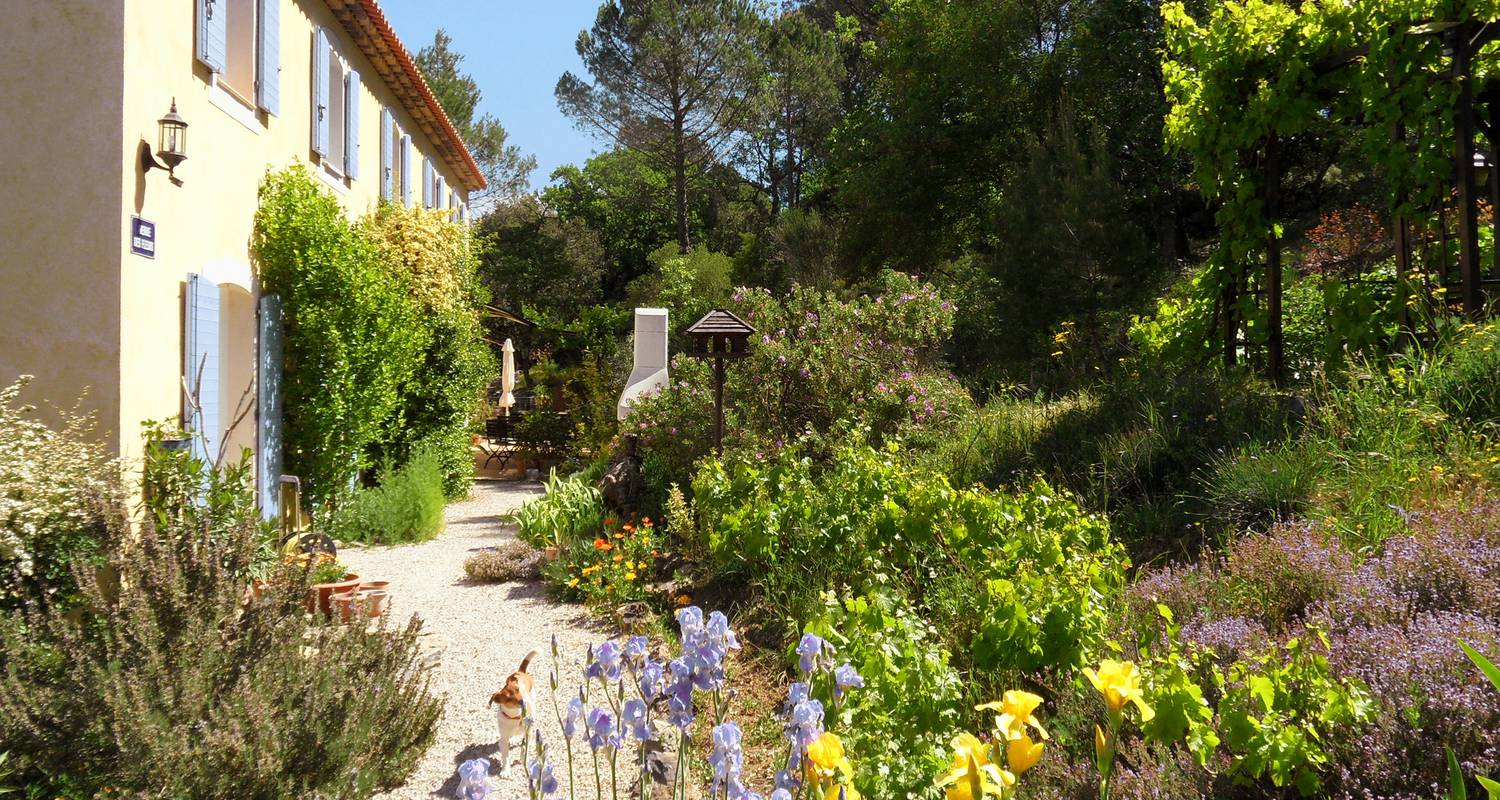 Bed & breakfast: la bastide des templiers (guest house set in picturesque countryside amidst lovely natural sceneries) in bras (132084)