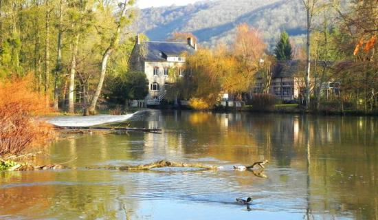 Le Moulin du Vey picture