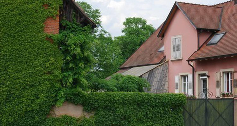 Gîte: gîte du neuland à rosheim (115059)
