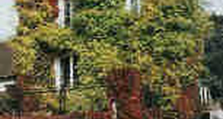 Bed & breakfast: la maison haute in chevreuse (115523)