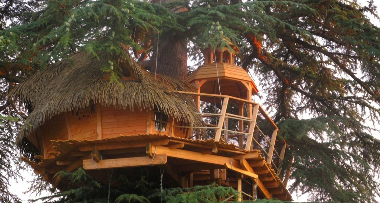 Sur un arbre perch pons 27483 - Chambre d hote dans les arbres ...