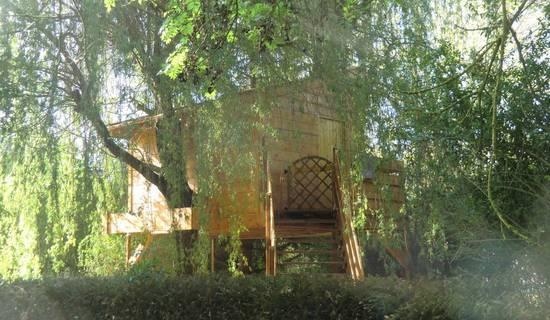 cabane dans les arbres picture