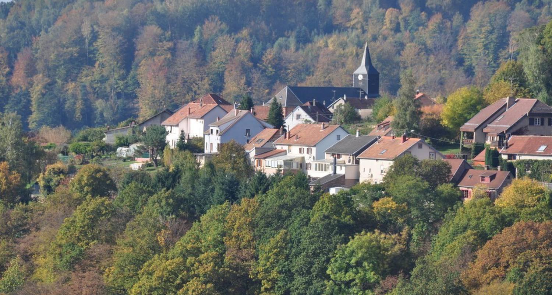 Gîte: la petite maison in haselbourg (116268)