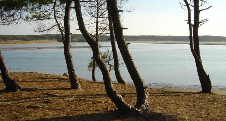 Emplacements de camping: camping st hubert à talmont-saint-hilaire (116392)