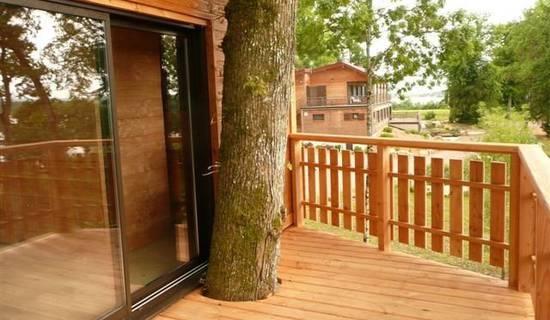 Maison dans les arbres picture