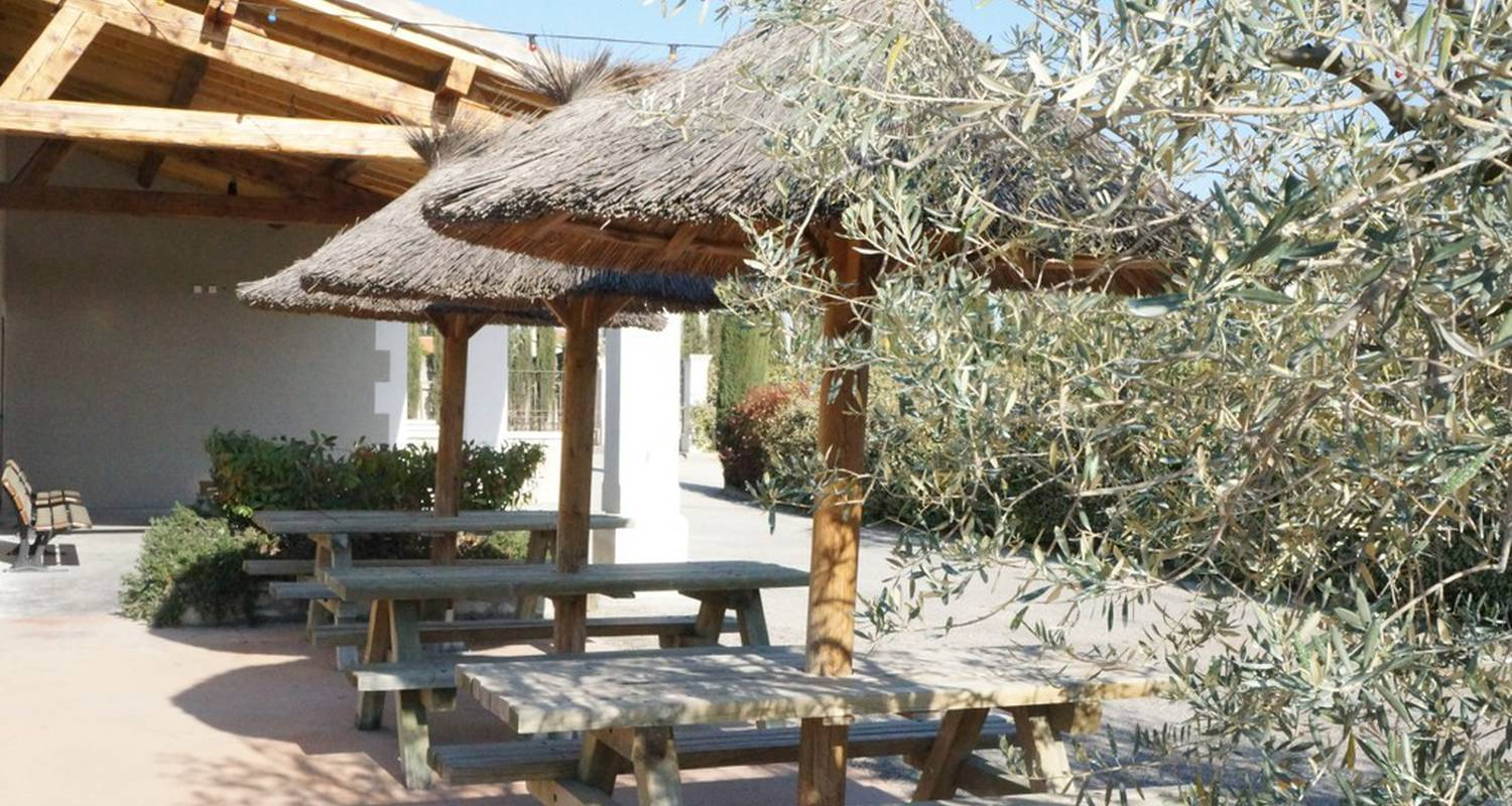 Camping pitches: camping monplaisir in saint-rémy-de-provence (116531)