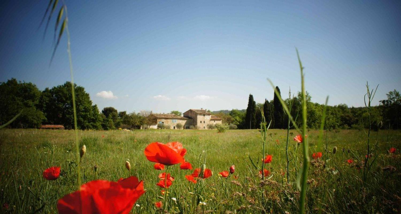 Habitación de huéspedes: le mas saint jacques en crillon-le-brave (116772)