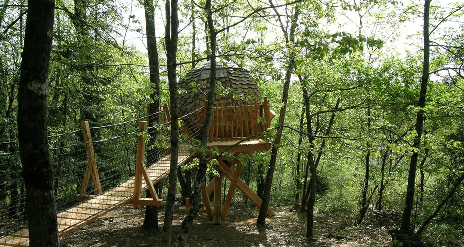Bed & breakfast: lov nid, tree-house in lembras (117042)