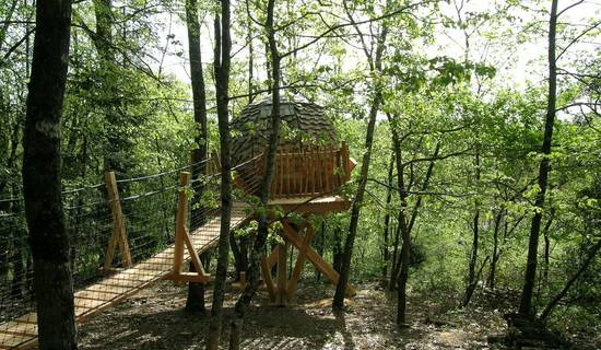 Lov Nid, tree-house picture